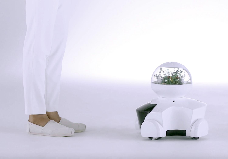 로봇을 일상의 풍경으로 만들기를 꿈..