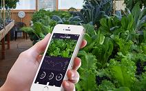 [Design close up] 첨단 기술과 결합된 스마트 농업의 현...
